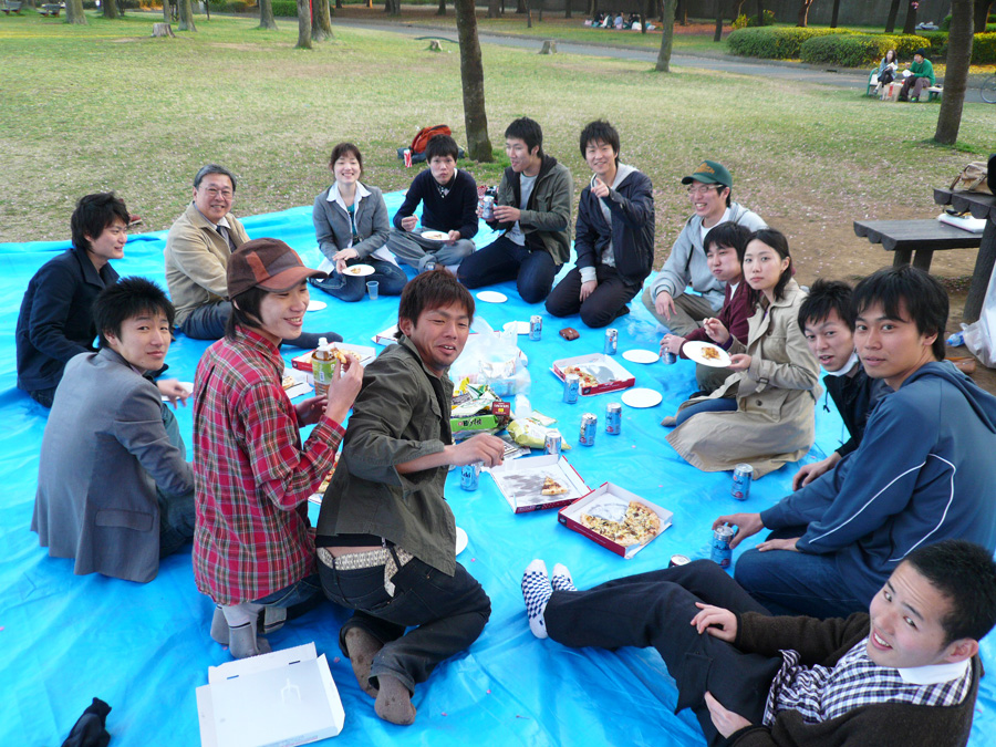 Hanami mit Neuen Kollegen(unter Kirschbaum)